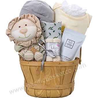 Baby gift baskets canada newborn gifts delivered from vancouver description available add ons description this elegant basket negle Image collections